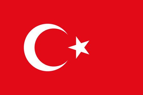 Ring billigt till Turkiet