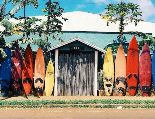 Surfkampanjer hos hallon och Vimla
