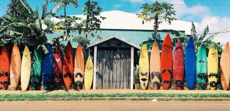 Surfkampanj hallon och Vimla